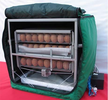 Инкубаторы для куриных яиц автоматические своими руками видео